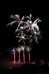 nico europe feuerwerke fireworks rhein in flammen rhine in flames rote aufstiege zu silbernen palmeneffekten, darüber große silberne palmeneffekte