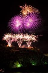 nico europe feuerwerke fireworks rhein in flammen rhine in flames drei gefächerte goldene und rosa fächereffekte, darüber rosa und goldene kugeleförmige funkeneffekte