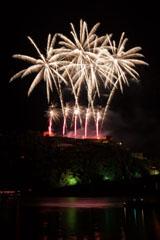 nico europe feuerwerke fireworks rhein in flammen rhine in flames rosa aufstiege zu goldenen sprüheffekten, darüber goldene aufstiege zu goldenen palmeneffekten mit spiegelung im rhein