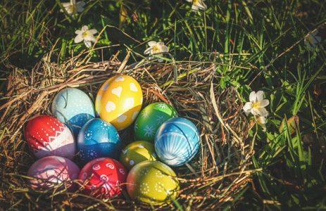 NICO wünscht Frohe Ostern!